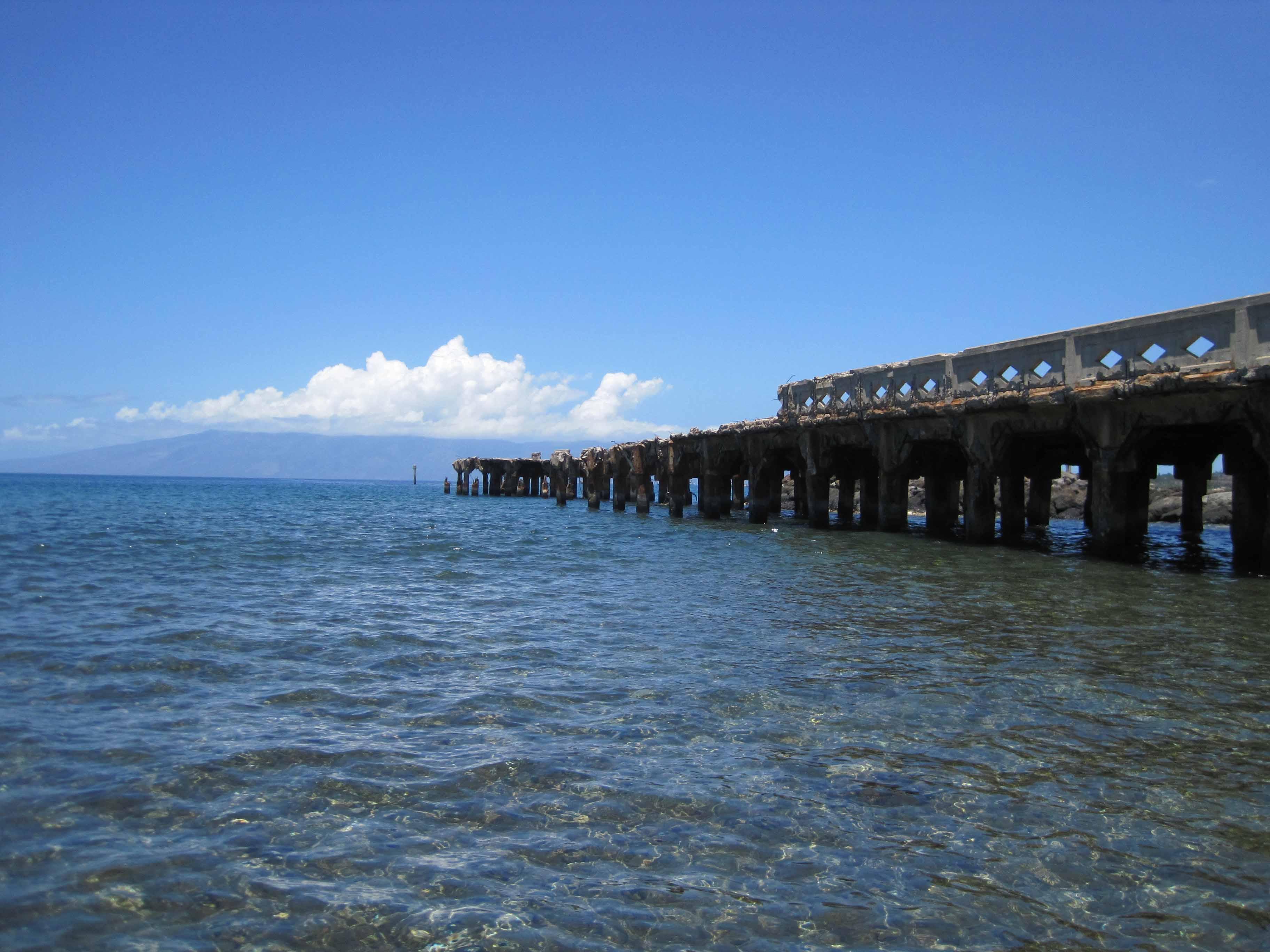 Scuba Diving Lahaina Maui Mala Wharf
