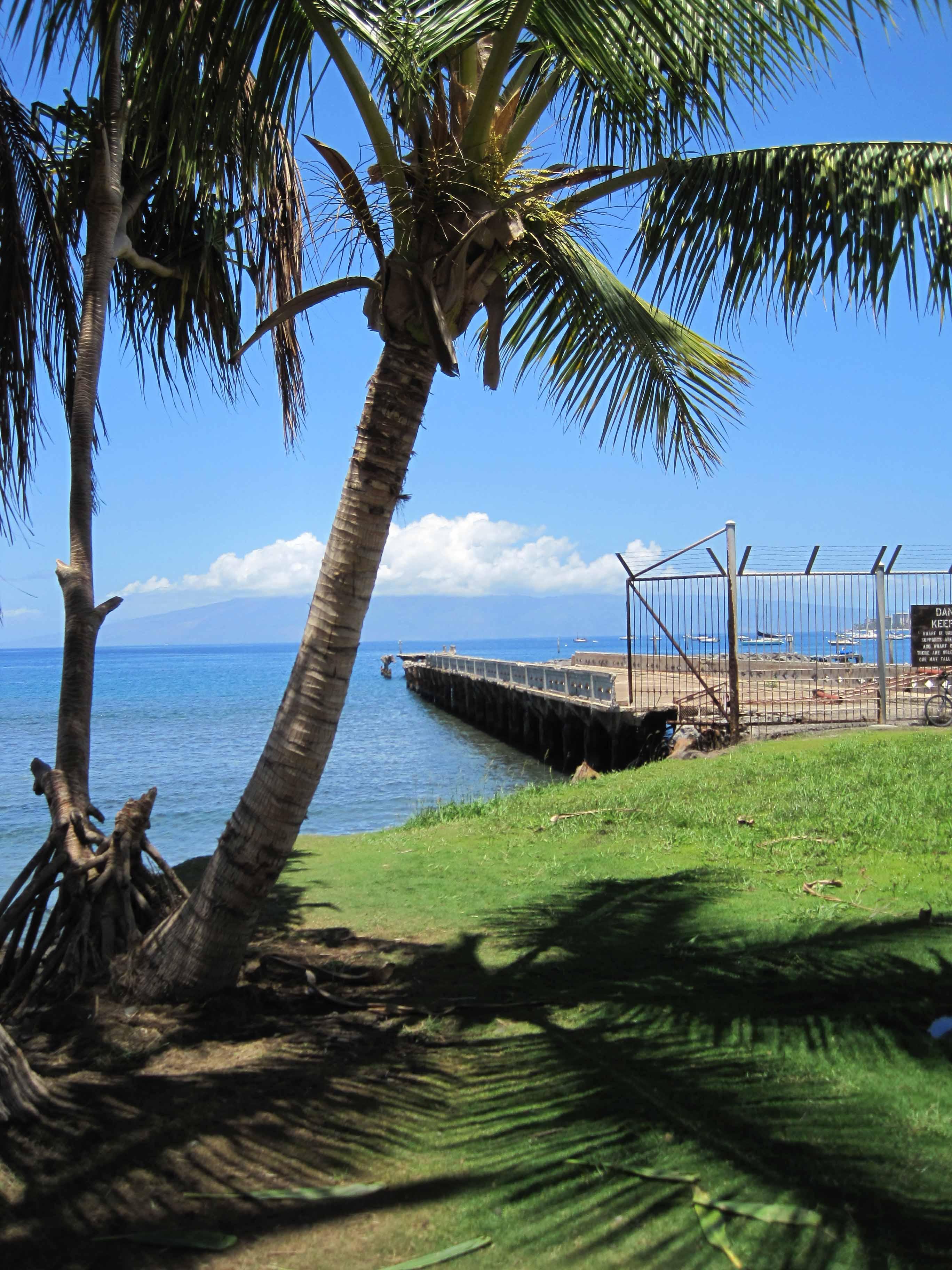 Mala Wharf Lahaina Scuba In Maui