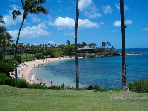 Shore Dive Maui Kapalua Bay