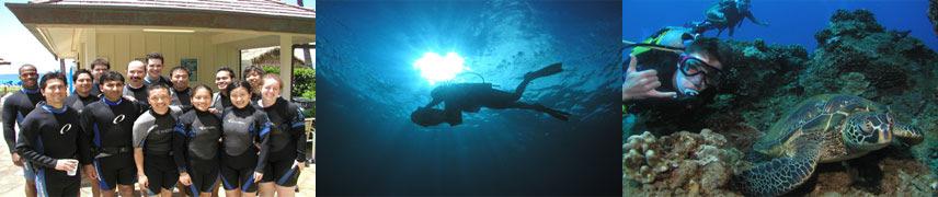 Maui Scuba Divers Banner