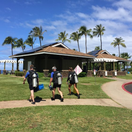 Airport beach Maui scuba divers