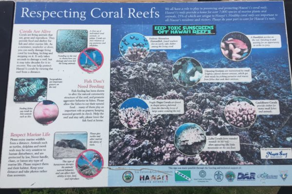 Maui Scuba Reef Awareness