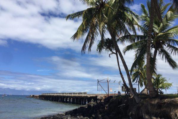 Maui scuba dive site Mala wharf Lahaina