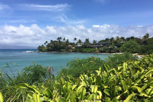 Napili Maui