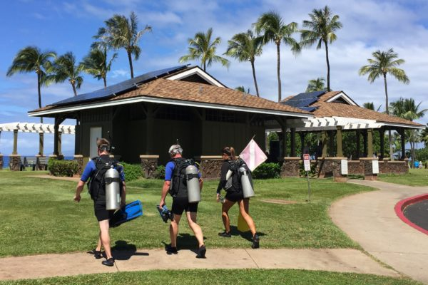 Scuba Divers Going Out Airport Beach Maui